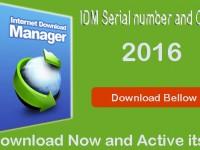IDM 6.25 Build 8 Crack serial key free Download